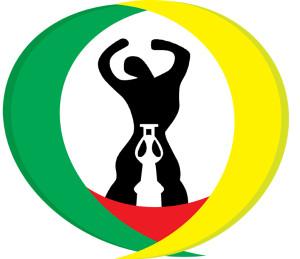 Logo Diaspora Togolaise Indépendante